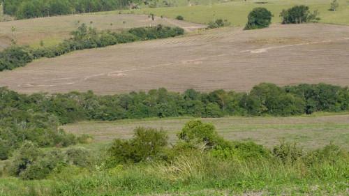 Fazenda Mangueira Preta