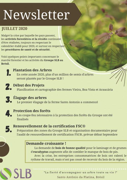 SLB_Brazil_Forestry_Activity_2020