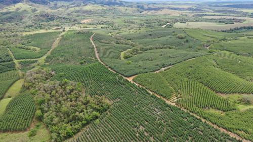 Fazenda Santo Antônio (CAESIA Agroflorestal)