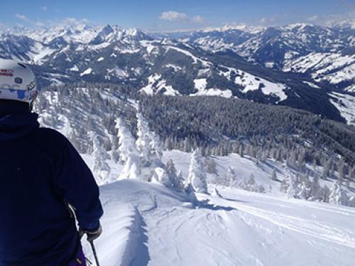Plante árvores para esquiar amanhã
